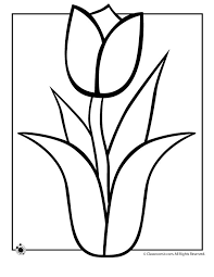 Spring Coloring Pages Tulip Page Classroom Jr