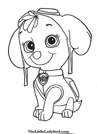Free Skye From Paw P Patrol Coloring Pages Ryder