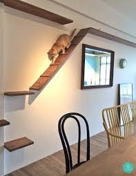10 Quirky, Crazy, Cool Homes In Singapore | Cat, Cat Furniture And ... Fniture Cat Friendly House 20 Amazing Ideas Petfriendly Home Renovation Trends Eihome Design Your Will Love Hgtvs Decorating Blog View Pet Apartments Albany Ny Home Planning 3 Bedroom Dog Friendly House Friendnicely Furnished Shoal Bay Holiday 51 Rigney Street Pet The Owners Guide To A Beautiful Lillian Fantastic Inverloch Regatta Treat Stunning Pet Friendly Beachfront Vrbo Rustic Entryway Ideas Entry Rustic With Beds And