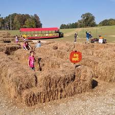 Pumpkin Patch Cleveland Mississippi by Fall Fun And Events At Bull Bottom Farms In Duck Hill Mississippi