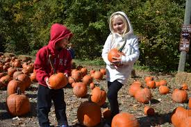 Lane Farms Pumpkin Patch 2015 by Beer Garden Pumpkin Bowling Newest Additions To Cherry Hill