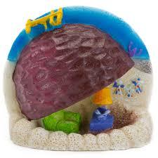 Spongebob Fish Tank Decor Set by Penn Plax Spongebob Patrick U0027s Rock Home Aquarium Ornament Petco