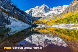 Christmas Tree Permits Durango Colorado by White River National Forest Outthere Colorado