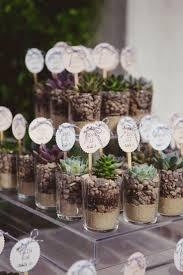 Succulent Wedding Favors Place Cards Escort Is There Such A Thing As
