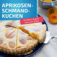 aprikosen schmand kuchen