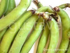 comment cuisiner les f es fraiches les fèves gustave
