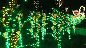 Garden Lights Atlanta Botanical Garden