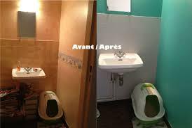 quelle couleur pour des toilettes couleur peinture pour wc impressionnant sur dacoration intarieure