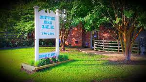 countryside animal hospital countryside animal clinic inc home