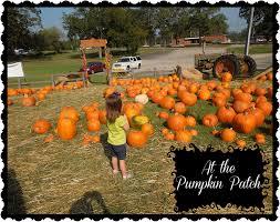 Hurricane Utah Pumpkin Patch by October 2012 Cici U0027s Corner F