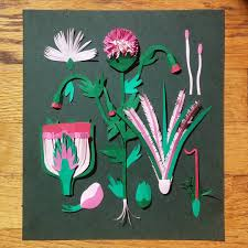 Botanical Studies Through Colorful Cut Paper Illustrations By Niege Borges