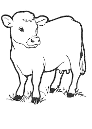 Free Printable Cow Coloring Pages For Kids