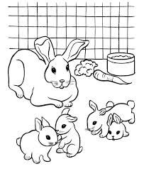 Rabbids Invasion Coloring Pages Pictures Of Easter Rabbits Different Kinds Rabbit Pets