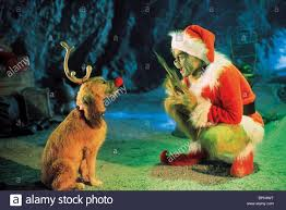The Grinch Christmas Tree Scene by Max The Dog How The Grinch Stole Christmas 2000 Stock Photo