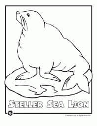 Sea Lion Endangered Animal Coloring Page