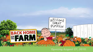 Pumpkin Patch Harrisonburg Va by Back Home On The Farm The Great Pumpkin Youtube