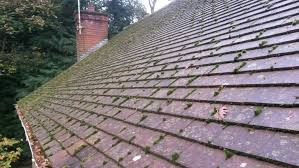tile roof paint products can you your shingles painting outdoor