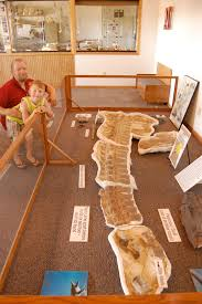 Ashfall Fossil Beds State Historical Park by Shanna U0027s Adventures Ashfall Fossil Beds State Historical Site