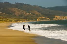Ardenwood Park Pumpkin Patch by California U0027s Best Beaches North Of San Francisco Foster Travel