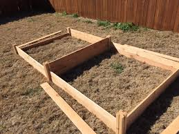 raised beds chocolate chips and chaos