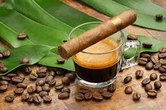 Cuba Coffee Beans 2015