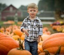 Pumpkin Patch Avon Ct by Avon Mommypoppins Things To Do With Kids