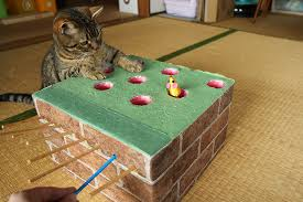 Cat Loving Human Crafts A Homemade Whack Mole Game To Entertain Her Playful Felines