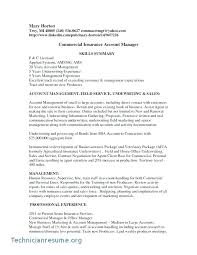 Account Executive Sample Resume Insurance Manager Samples