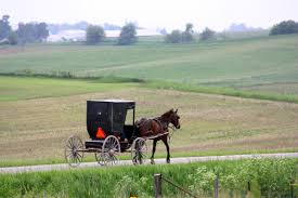 Day Trip To Kalona, Iowa | Iowa Girl On The Go Amish Horses April 2016 For Sale Featured Listings Kalona Homes For Property Search In Single Familyacreage Sale Iowa 20173679 Tours Chamber September 2014 Ia Horse Auction Pictures Of Amana Colonies Day Trip To Girl On The Go