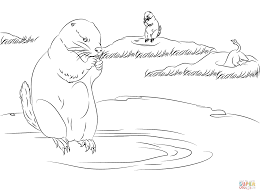 Click The Prairie Dogs Burrow Homes In Ground Coloring Pages