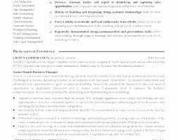 Resume Summary Statement Examples Mid Level Beautiful Example Of For Bank
