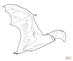 Click The Fruit Bat Coloring Pages