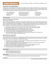 Inside Sales Resume Inspirational Strong Examples Of Resumes