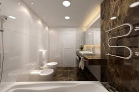Primitive Living Rooms Design by Decorative Living Room Pillows Primitive Living Room Furniture