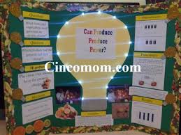 fruit light bulb science project lighting