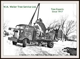 Weller Tree Service | Toronto | GTA | Pruning | Stump Removal Weller Truck Grand Rapids Web Design By Valorous Circle Jayme Laing On Twitter Barb Just Rolled Her Truck And The New Maxxis Liberty A Yxz1000r Driven Corry Youtube Salvage Cars For Sale In Michigan Repairables About Home Ipections My Uterus Hates Skinny Jeans Alignment Monkey Reman Difference Remanufactured Vs Rebuilt Optima Batteries Introduces New Virtual Reality Experience Martinsburg Fire Department Captain Elected Chair Of Emsac News Meritor Automatic Transmission Item Df9426 Sold
