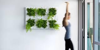 Indoor Living Wall Planter = Easy Vertical Gardening