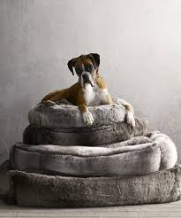 Pottery Barn Dog Bed by Faux Fur Why Is It All Over The House The Washington Post