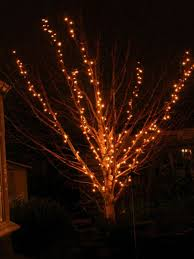 how to use string lights on outdoor trees