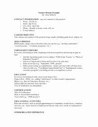 Resume Bullet Points Examples Awesome Format Intoysearch