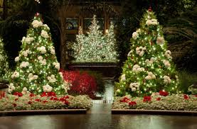 Christmas Tree Shops Lancaster Pa by Longwood Gardens Opens Its Popular Christmas Display On