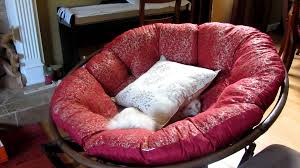 Outdoor Papasan Chair Cushion Cover by Silly Cat Habit Climb On Rocking Chair And Tunnels Under Pillow