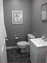 Small Bathroom Remodel Pictures Before And After Elegant Wonderful ... Best Colors For Small Bathrooms Awesome 25 Bathroom Design Best Small Bathroom Paint Colors House Wallpaper Hd Ideas Pictures Etassinfo Color Schemes Gray Paint Ideas 50 Modern Farmhouse Wall 19 Roomaniac 10 Diy Network Blog Made The A Color Schemes Home Decor Fniture Hidden Spaces In Your Hgtv Lighting Australia Fresh Inspirational Pictures Decorate Bathtub For 4144 Inside