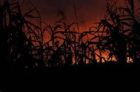 Poplar Grove Pumpkin Patch Wilmington Nc by North Carolina Haunted Houses Find Scariest And Best Haunted