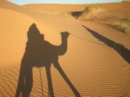 Trekking In Desert Mauritania