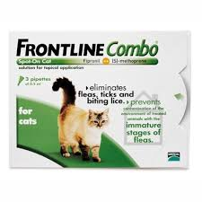 flea treatment for cats frontline flea treatment for cats pet drugs