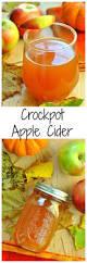 Pumpkin Pie Moonshine Crock Pot by Best 25 Crockpot Apple Cider Ideas On Pinterest Apple Cider