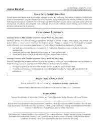 Resume For Nanny Sample Child Care Examples Unique