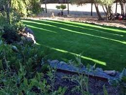 Carpet Grass Florida by Outdoor Carpet Tavares Florida Eco Friendly Products