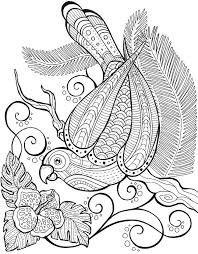 Welcome To Dover Publications Keep Calm And Color Birds Of Paradise Coloring Book